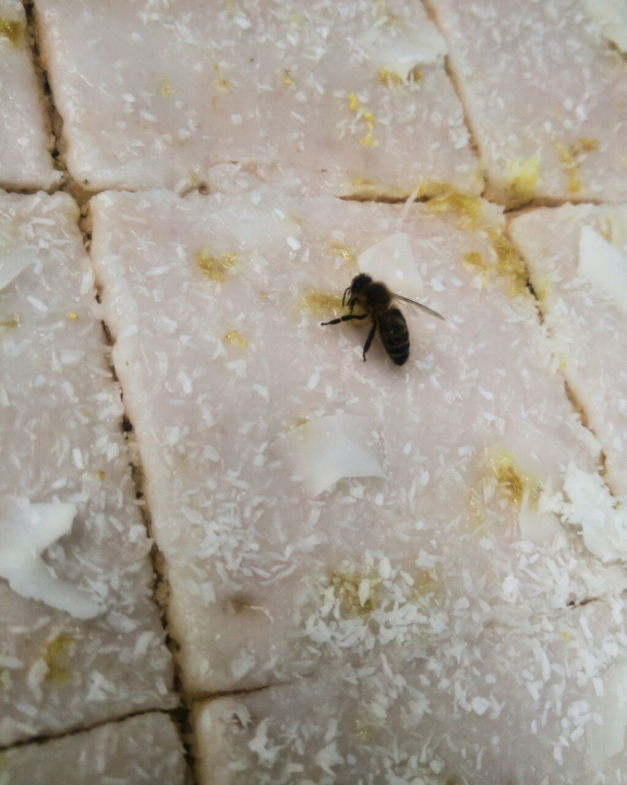 Biene die auf dem Zuckerguss Platz genommen hat.