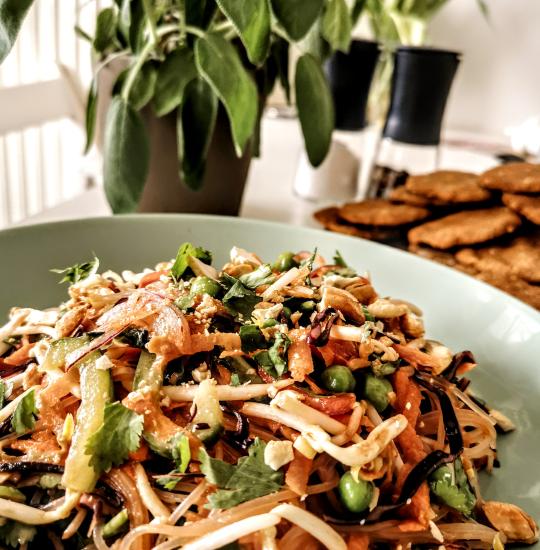 Thai-Salat mit Glasnudeln, Erdnüssen, Paprika, Mungobohnensprossen, Karotten und vielem mehr! Alles auf einem Teller angerichtet mit einer Pflanze im Hintergrund.